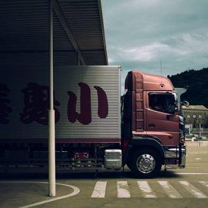 Bussing & Transport
